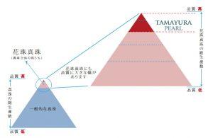 花珠真珠の最高峰 TAMAYURA PEARL